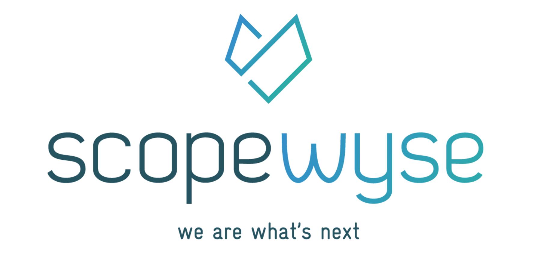 scopewyse gmbh partner inserto network of experts